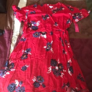 Xhilaration Dress brand new size Large